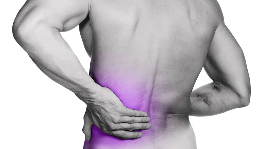 physiotherapy in the management of back pain